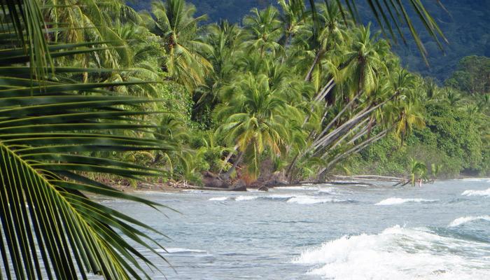 Nationalpark Marino Ballena in Costa Rica