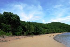 Foto von den Fischi Inseln