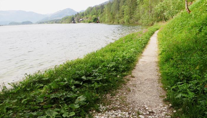 Hallstatt Ostuferweg Salzkammergut