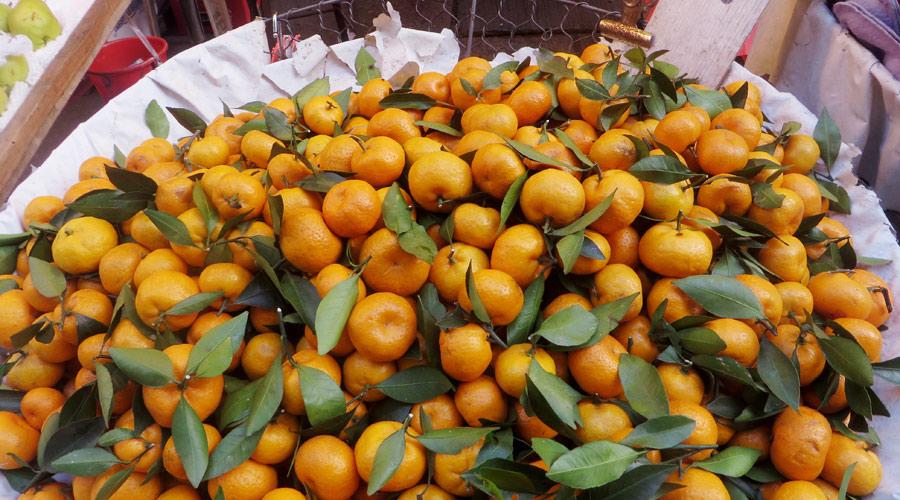 Früchte am Markt in Hongkong