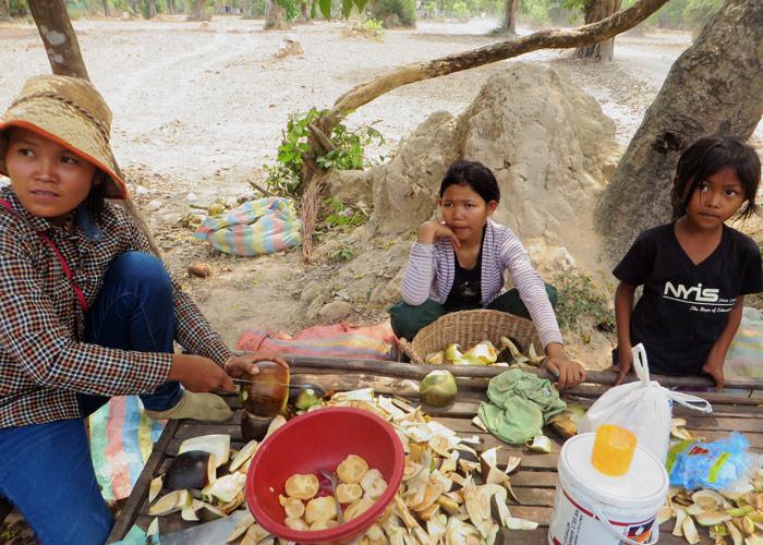 Palmfrucht-Verkaeufer, Siem Reap, Kambodscha