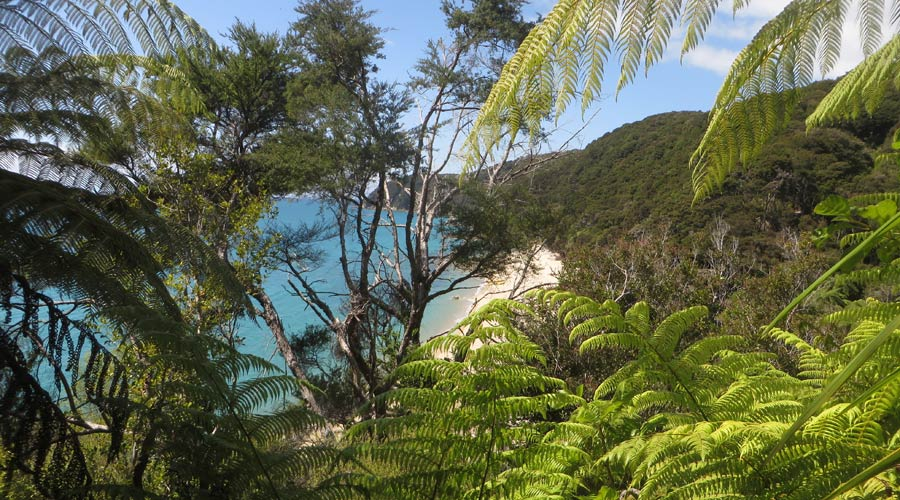Aussicht am Abel Tasman Coastal Track in Neuseeland