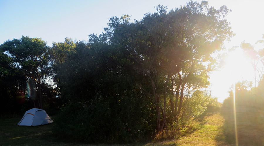 Zelten am Abel Tasman Track Neuseeland