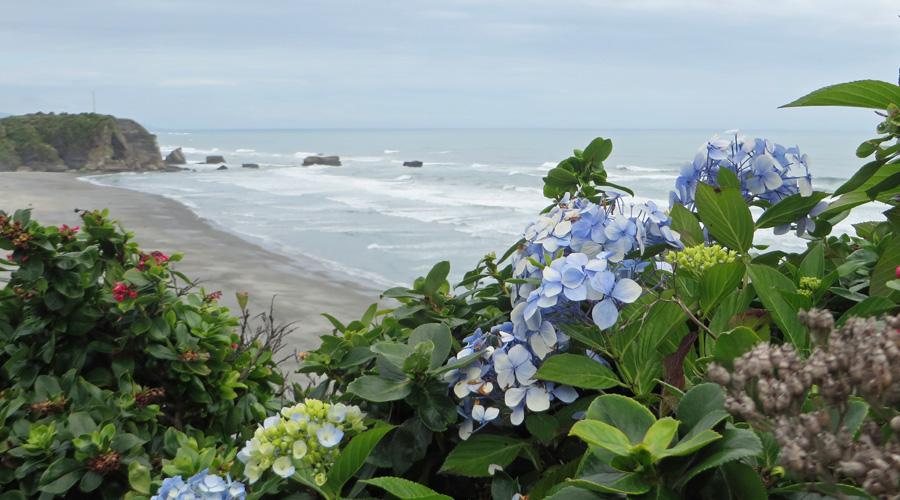 Punakaiki_Neuseeland_Meer
