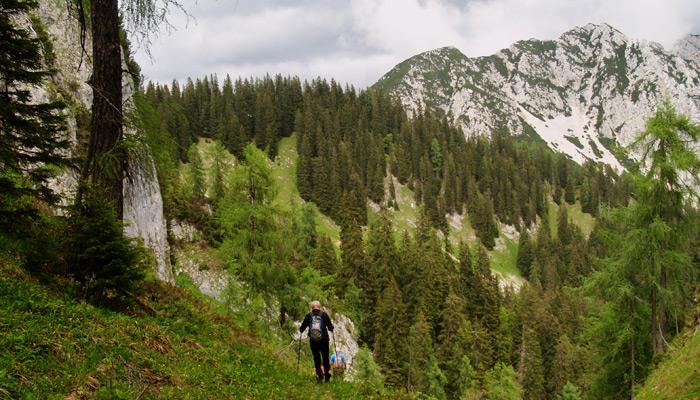 Salzkammergut BergeSeen Trail_Weitwanderweg in Österreich_Bergblick