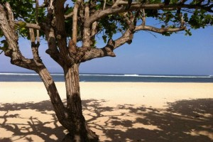 Strand_Bali_CorneliaRidlmaier_600x400