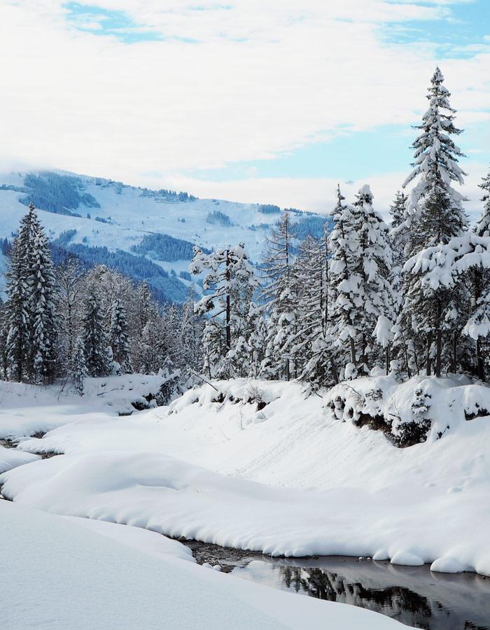 Suzuki SX4 S-Cross_Winterlandschaft in Maria Alm