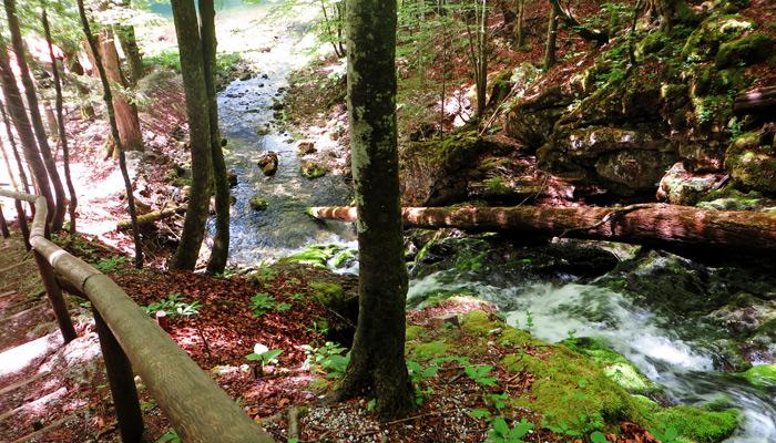 Traunursprung am Kammersee