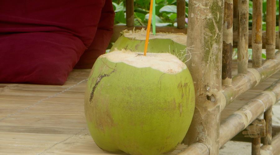 Kokosnuss in Vietnam
