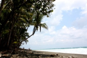 Ein Fußmarsch vor perfekter Strandkulisse.