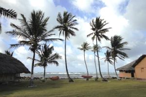 Palmen säumen die Strände der kleinen Inseln von San Blás.