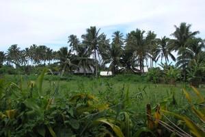Autofriedhof auf Rarotonga, Cook Inseln