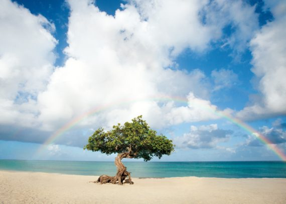 Karibikinsel Aruba