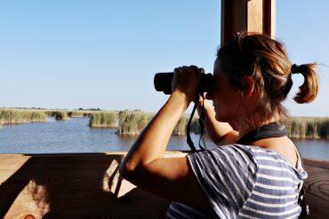 Mit dem Fernglas im Nationalpark Neusiedler See
