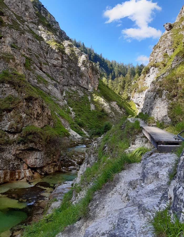 Flussbaden in Oesterreich_Oetschergraeben Weg