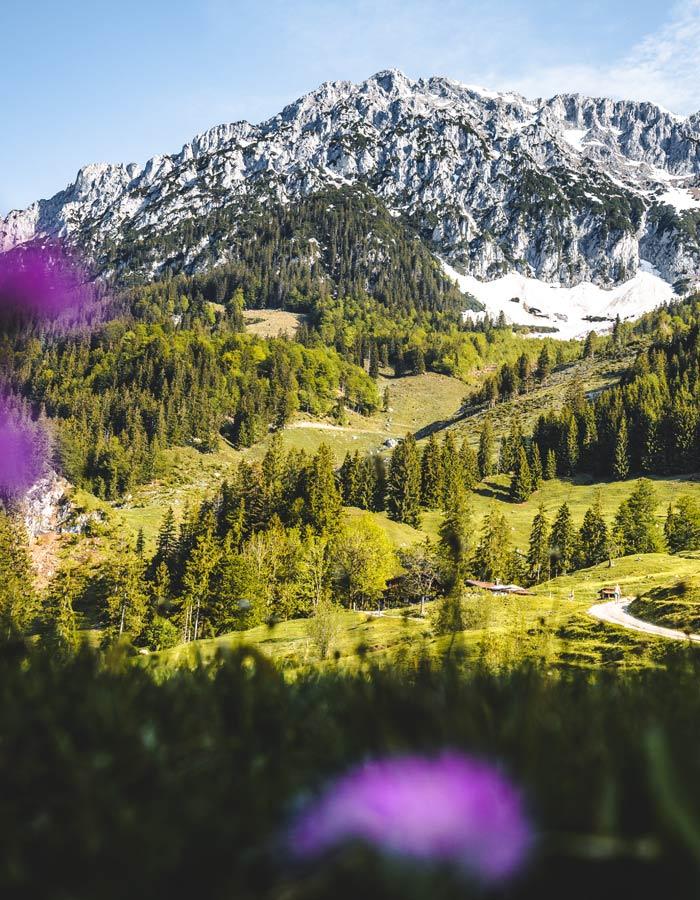 Naturschutzgebiet Kaisergebirge