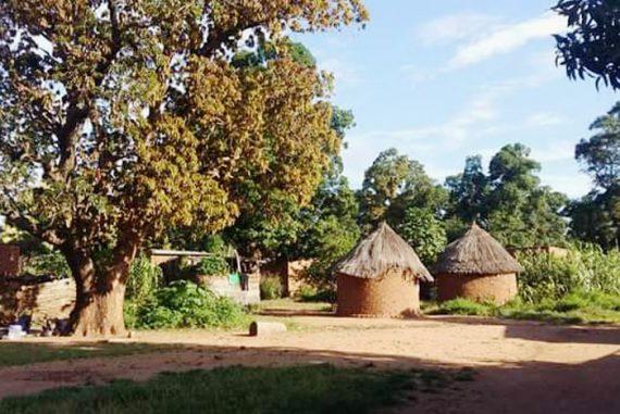 Traditionelle Hütten im Tschad