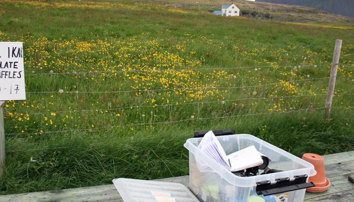 Gastfreundschaft in Island