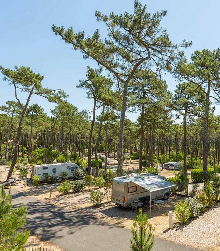 Camping Grands Pins