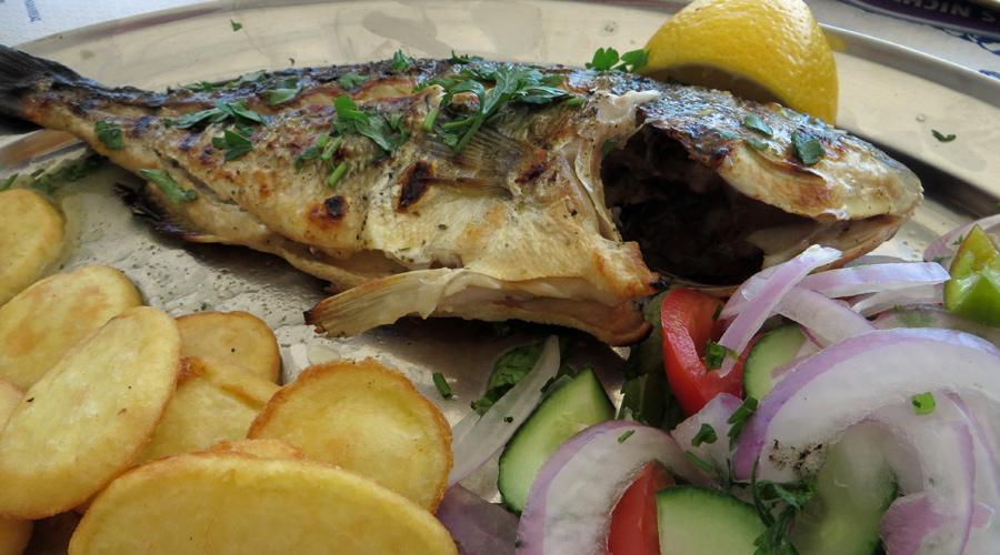 Frischer Fisch auf Rhodos