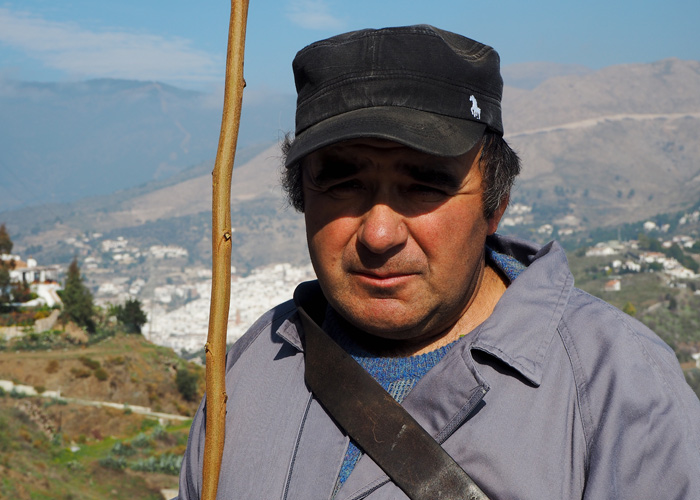 Andalusien_Malaga_weisse Doerfer_pueblos blancos_Hirte Emilio