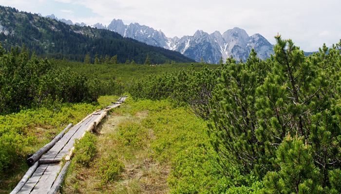 Salzkammergut BergeSeen Trail_Weitwanderweg in Österreich_