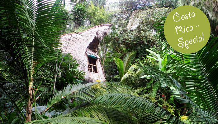 Zimmer mit Aussicht im Ojo del Mar in Costa Rica