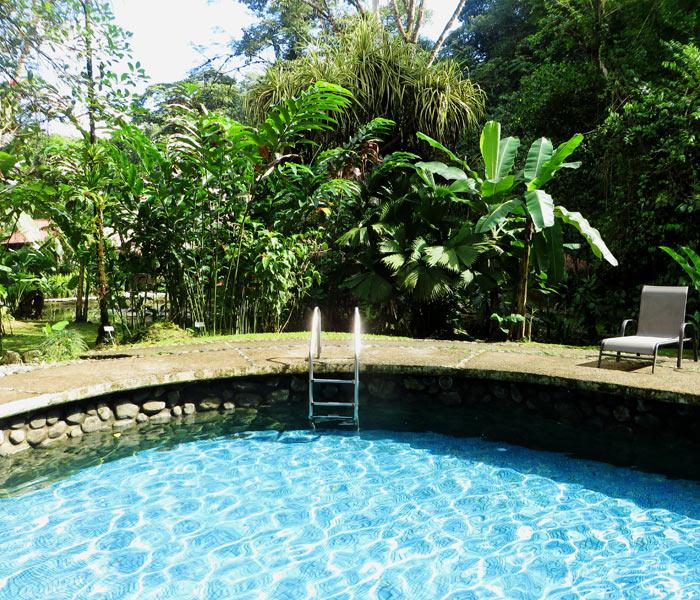 Swimmingpool im Regenwald