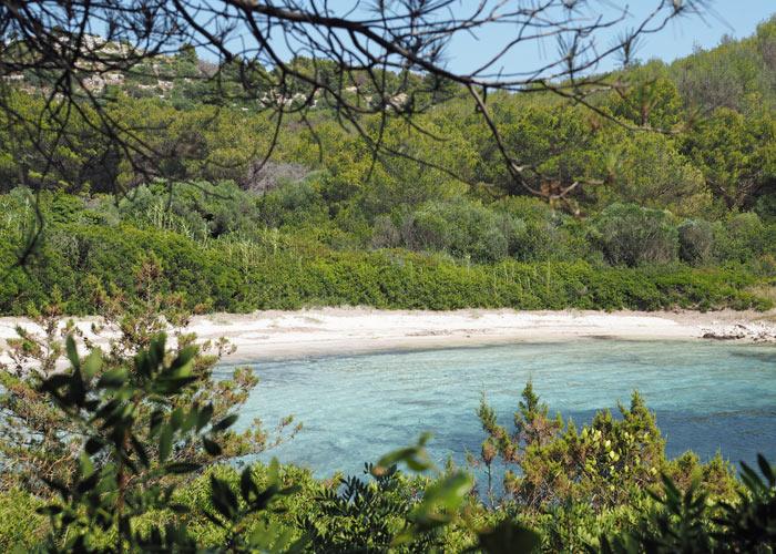 Strände auf Dugi otok_Sandtrand im Naturpark Telasica