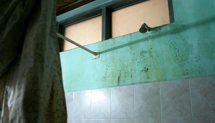 Schimmel-Dusche in Asien