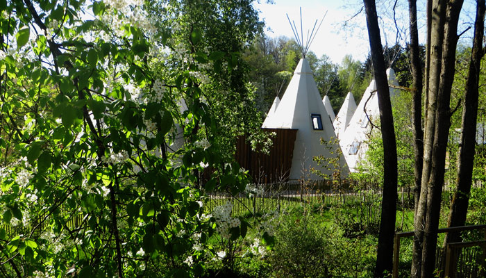 Tipi-Zelte im Ikuna Naturresort in Natternbach