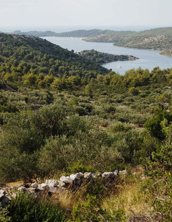 Dugi otok_schoenster Insel in Kroatien_ Naturpark Telašćica