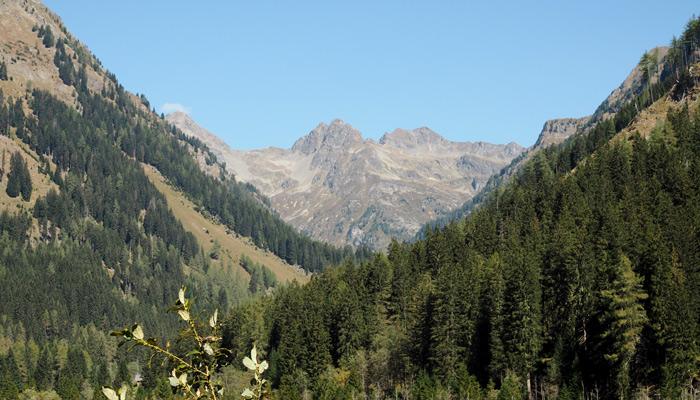 Urlaub Berge