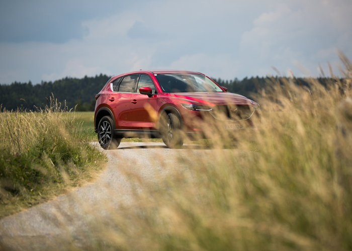 Mazda-Routes-2018_Thayatalstrasse_Waldviertel_kofferpacken.at