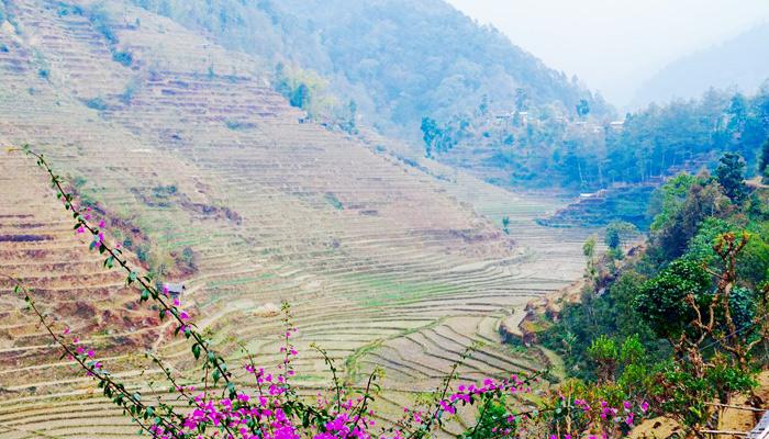 Nepal_Landschaft_NGO