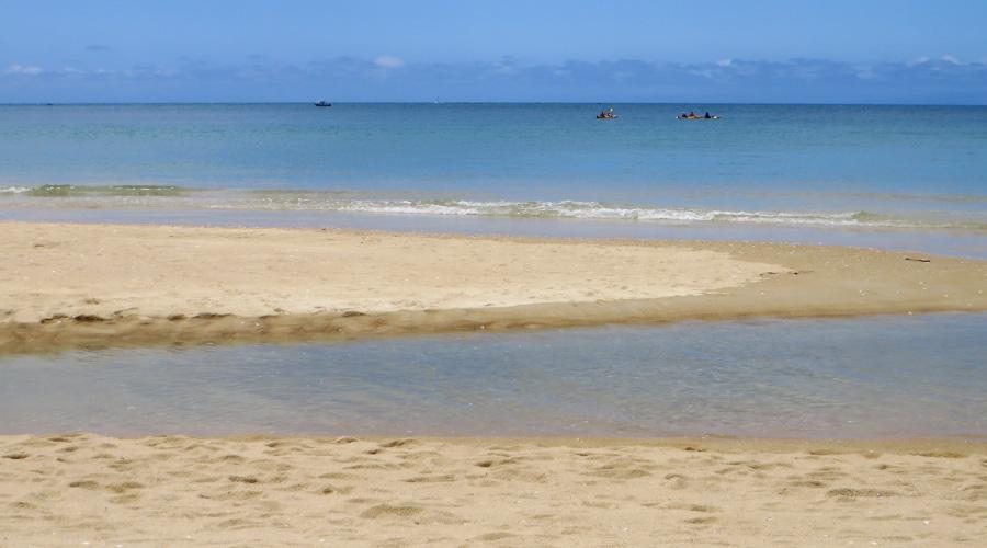 Bark Bay: Türkisblaues Meer am Abel Tasman Costal Track in Neuseeland