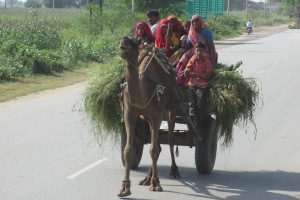 Wie alltagstauglich der Sari ist, sieht man auf diesem Foto.