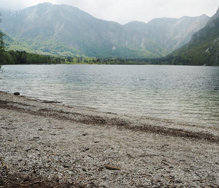 Bohinj See_Ufer_Slowenien