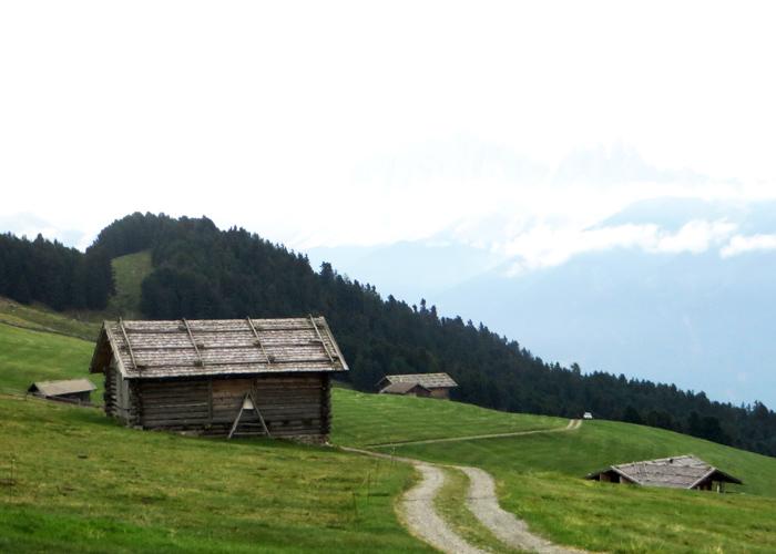 Alm-Erlebnis beim Familienurlaub mit Kindern in den Dolomiten in Südtirol