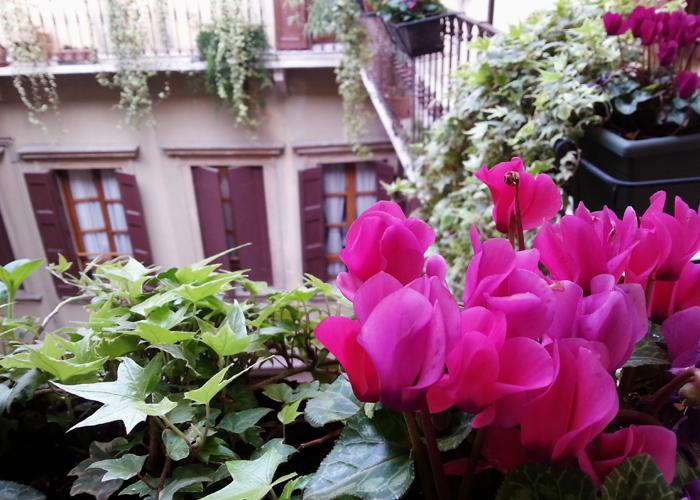 Verona Hostel Frauenhaus