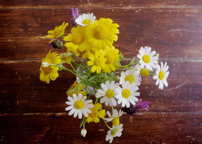 Blumenstrauß beim Workaway in Europa